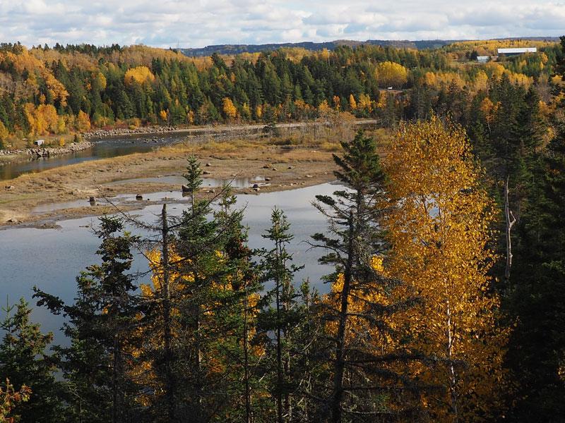 Bild 21 Wanderung durch einen kleinen naturbelassenen Park