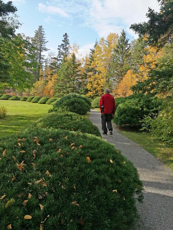 """Bild 29 Bummel durch den Garten """"Jardin de Metis"""""""