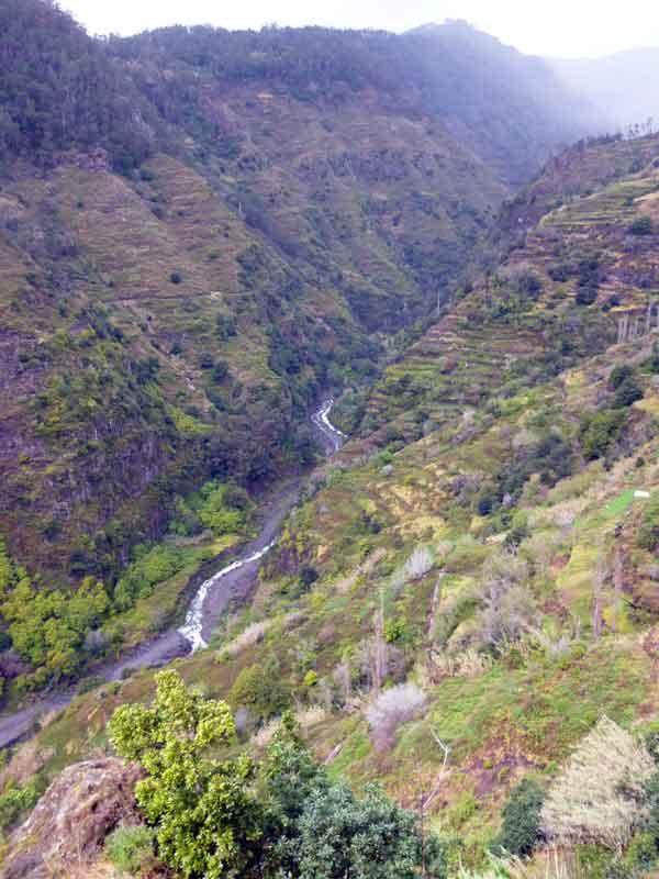 Bild 8 Wanderung auf der Levada Mohino und zurück auf der Levada Nova