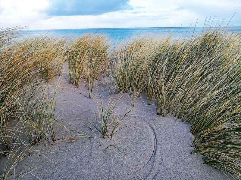 Bild 15 Spure die das Gras im Sand hinterläßt