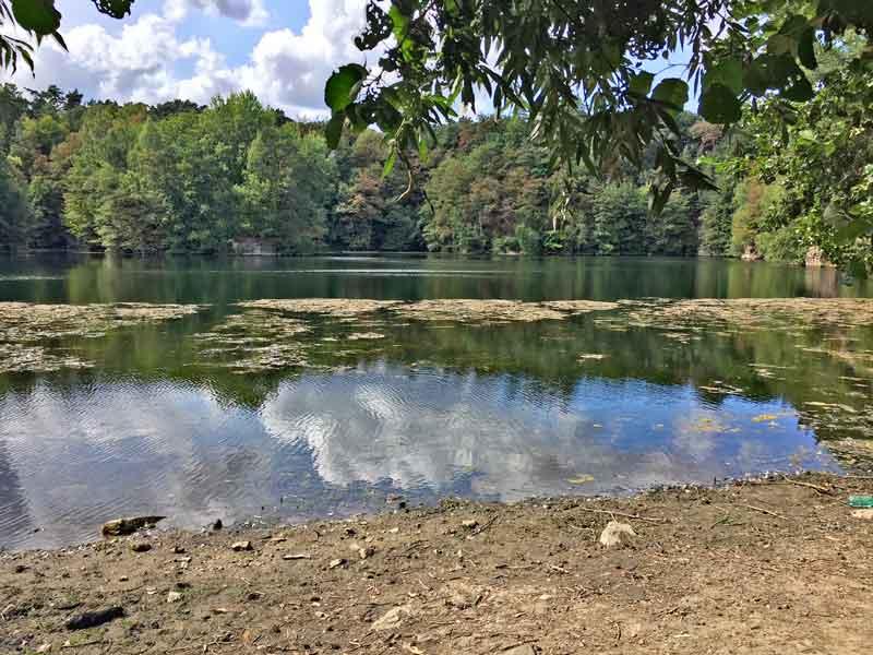 Bild 3 Blick auf den Oberwaldsee im Naturschutzgebiet