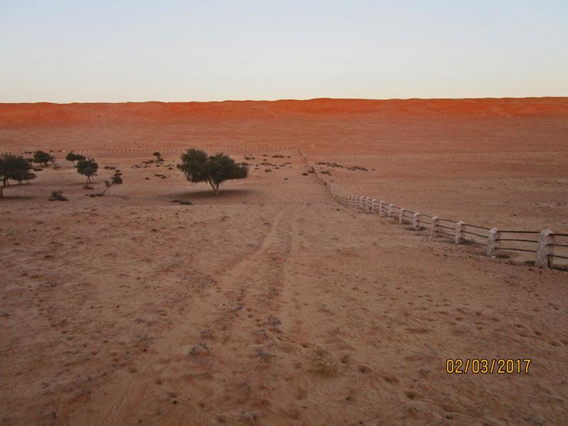 Bild 17 Blick auf die Wüste 1000 nights camp