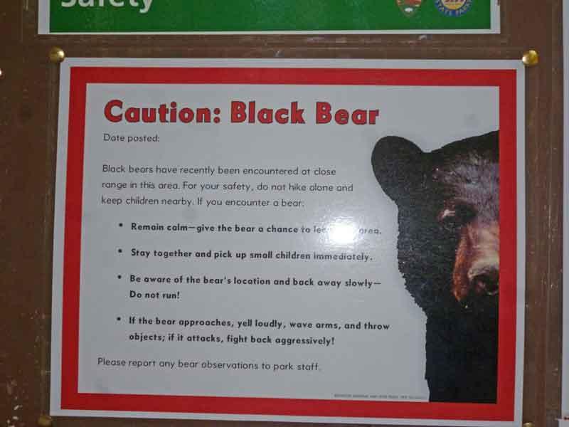 Bild 27 Bärenwarnschilder im Jedediah Campground