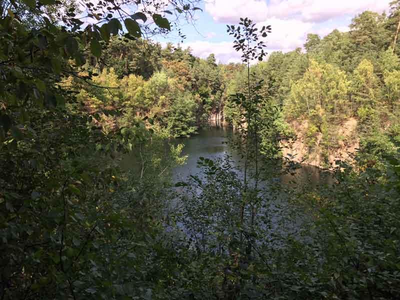 Bild 5 Blick auf den Oberwaldsee im Naturschutzgebiet