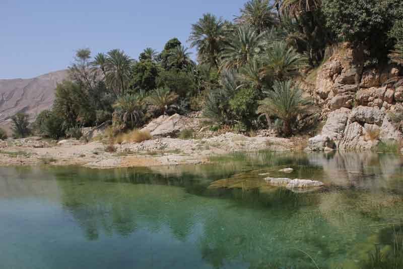 Bild 11 Naturpool an der Einfahrt ins Wadi Bani Khalid