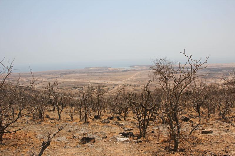 Bild 5 Im unteren nicht erschlossenen Teil des Wadi Darbat Blick zurück auf die Küste