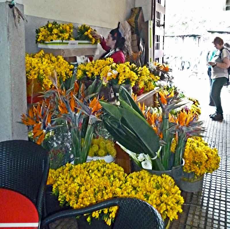 Bild 27 Blumen gibt es hier natürlich auch