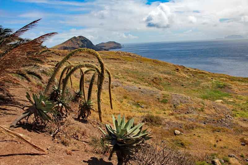 """Bild 2 Auf dem Weg zur östlichsten Spitze von Madeira dem """"Ponta de Sao Laurenco"""""""