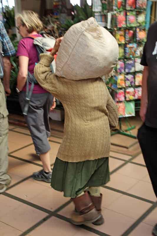 Bild 22 Ein alte Frau schleppt ihre Waren in den Markt