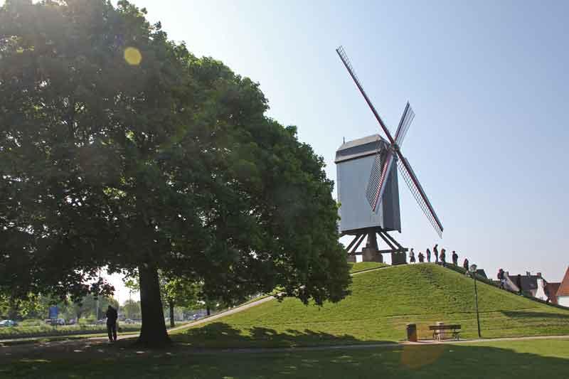 Bild 17 Windmühle in Brügge