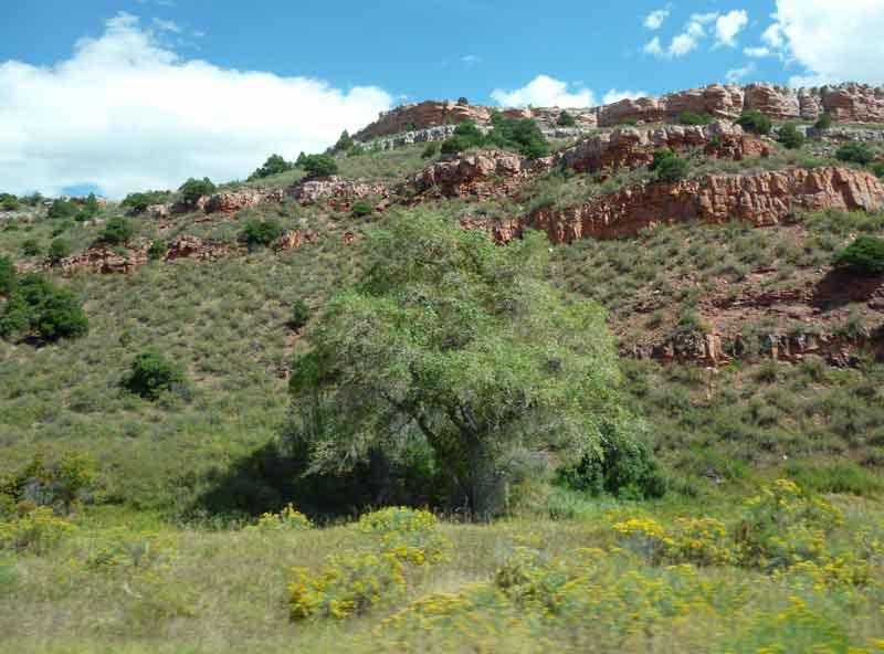 Bild 8 Unterwegs von Estes Park nach Laramie