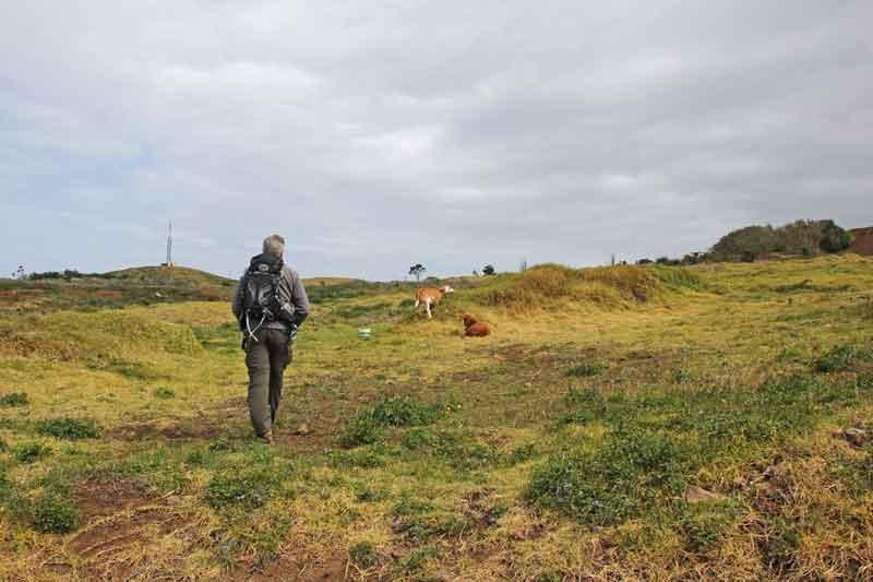 Bild 4 Auf dem Weg zum Leutturm von Ponta do Pargo