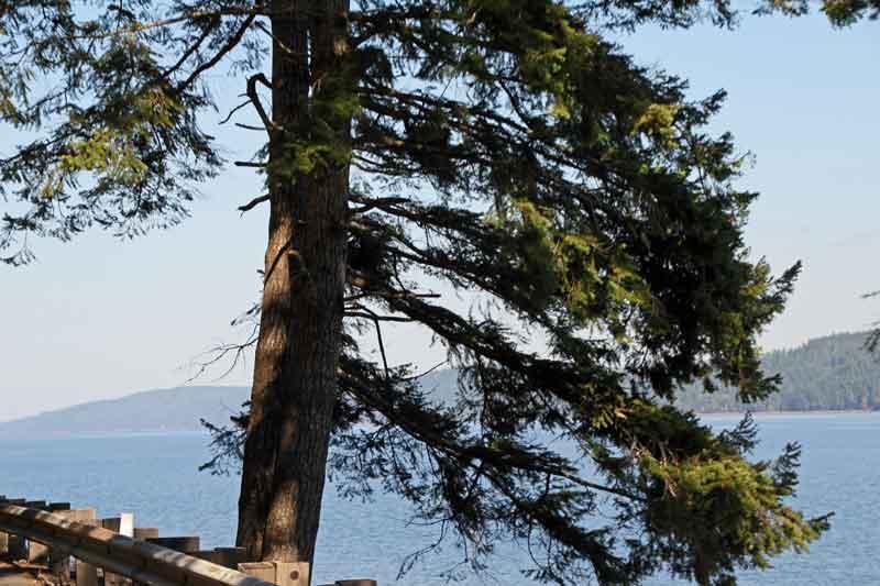Bild 7 Immer auf der 101 rund um die Olympic Peninsula mit tollen Aussichten auf das Meer