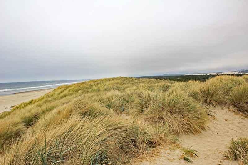 Bild 13 Blick auf Dünen und Pacific