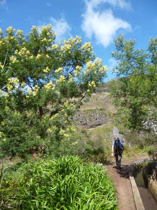 """Bild 5 Levadawanderung, Start oberhalb von """"Ribeira Brava"""""""