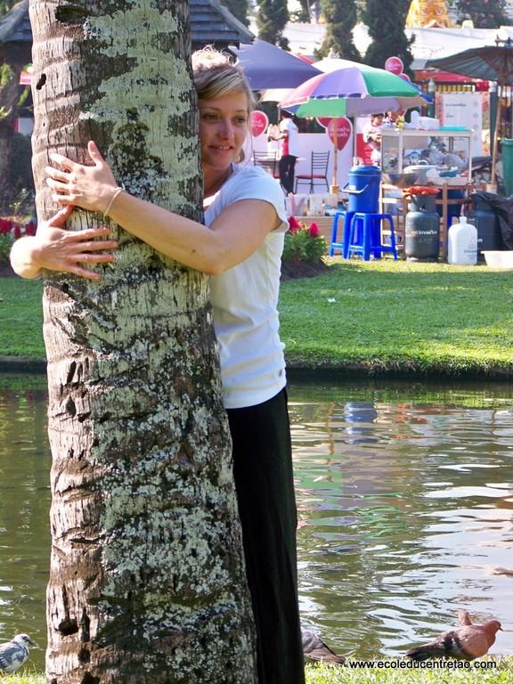je l'aime mon arbre !