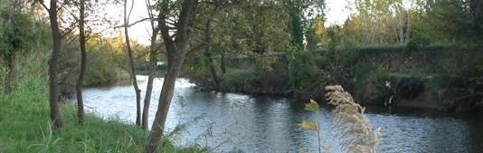 Bras de l'étang de Villepey