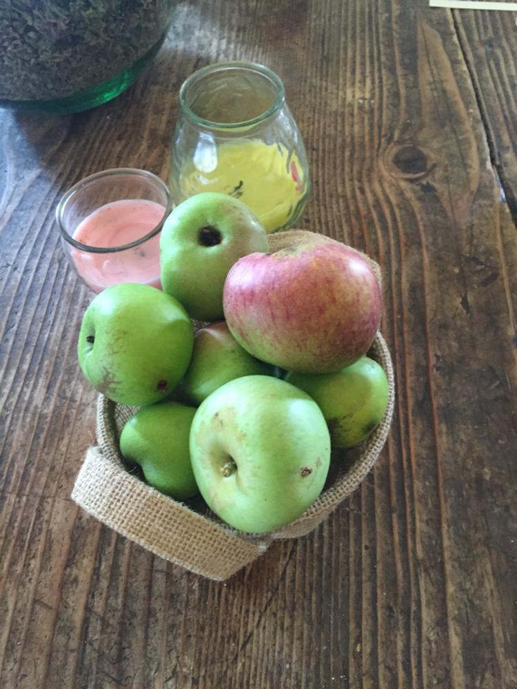 Le mele Annurca dal frutteto dei frutti dimenticati