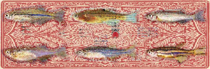 KC Kevin Clarke, Nusslein-Volhardt, digital print, 2001, 66 x 200 cm, Editon 5