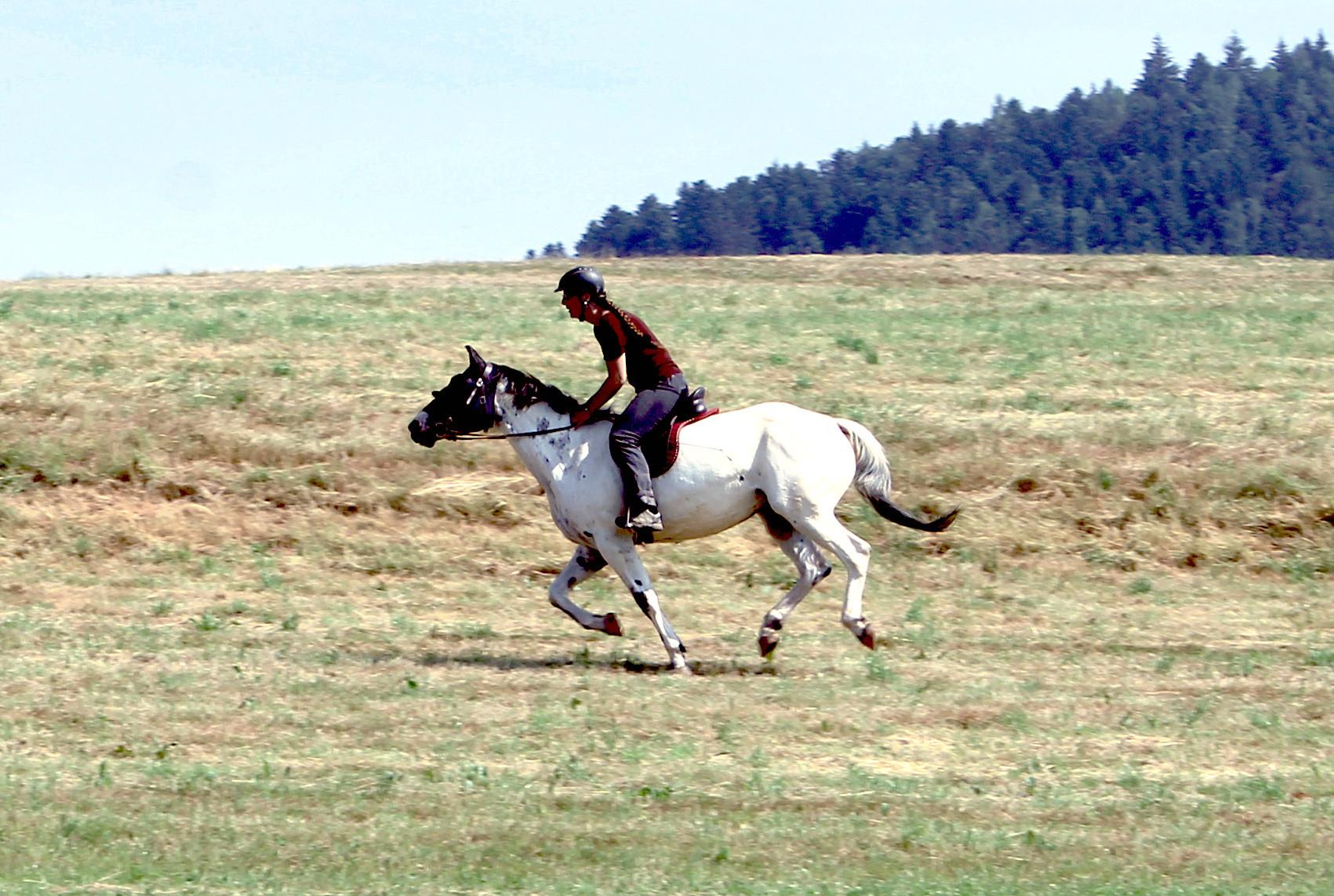 JIIIHA! So macht reiten Spass! :-D  ;-)
