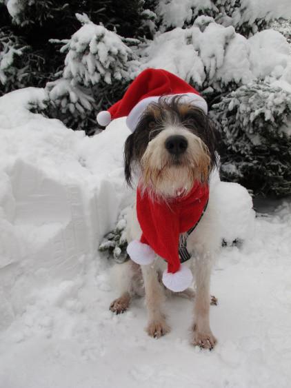 Na dann noch mal Frohe Weihnachten