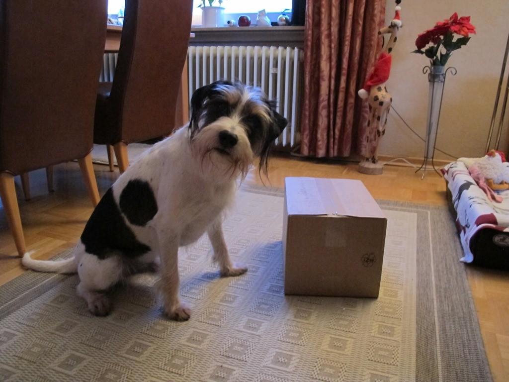 Sind da meine Geschenke drin?