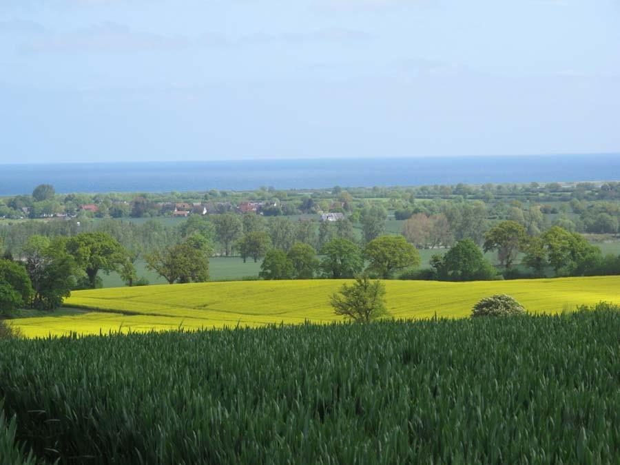 ...auf die Ostsee, den Binnensee und diese grandiose Landschaft!