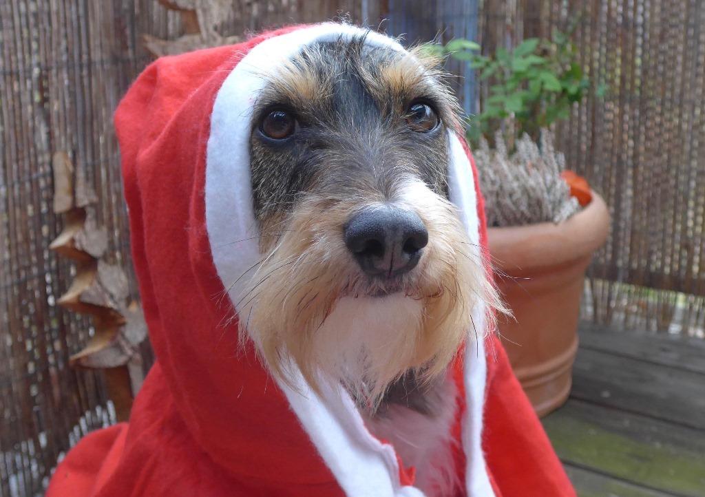 Das ist übrigens meine Weihnachtstochter Mila :-)
