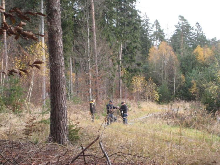 Dann geht es ab in den Wald