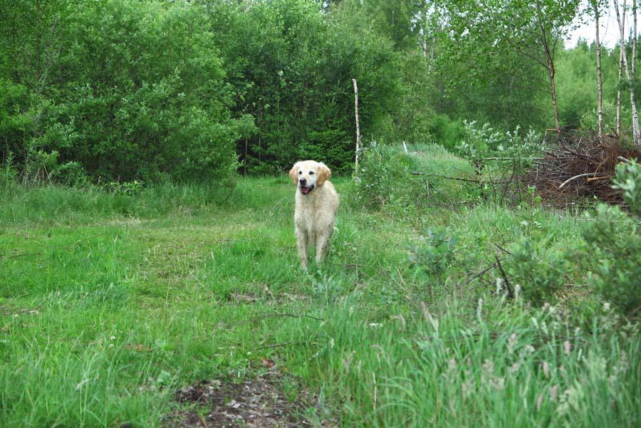 Lilly hat das Wasser entdeckt