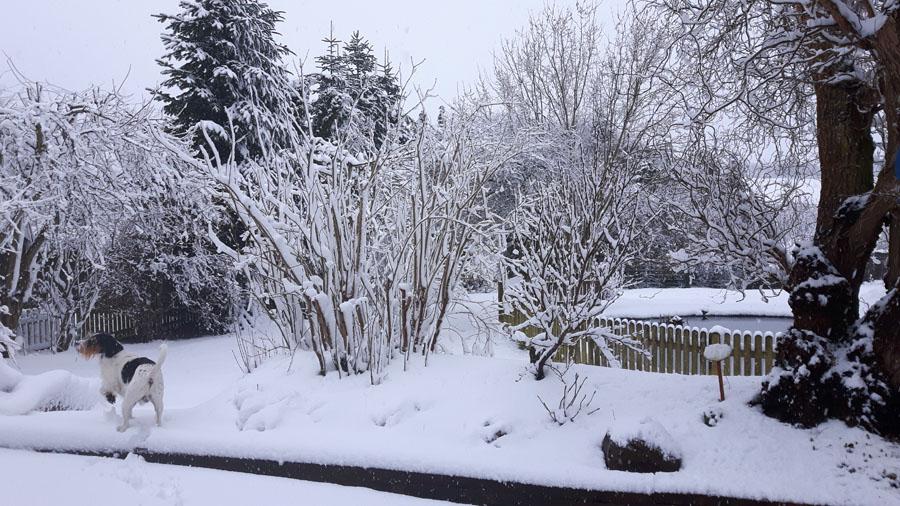 Und wieder Schnee
