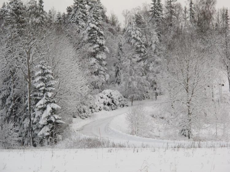 Und wieder Neuschnee...