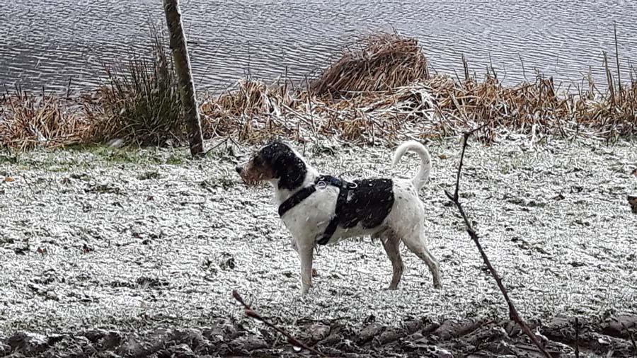 ...aber ich liebe ja den Schnee