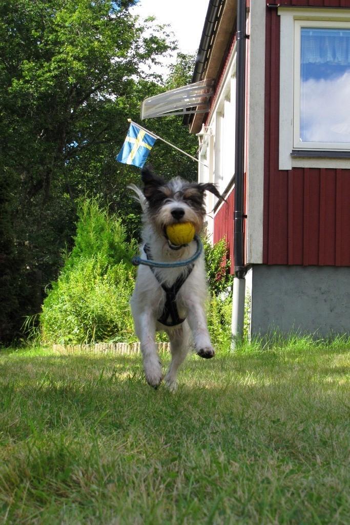 Ich bin auch ein Schwede!