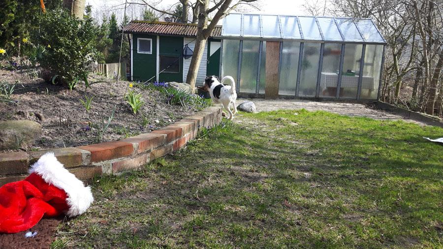 ...und ab damit durch den Garten
