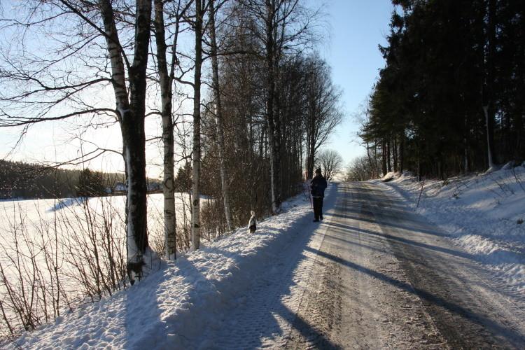 Und auf zu einem Weihnachtsspaziergang...