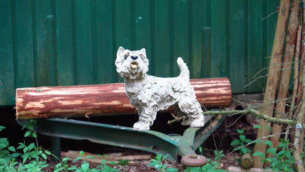 Manchmal trifft man auch ganz komische Hunde im Wald...