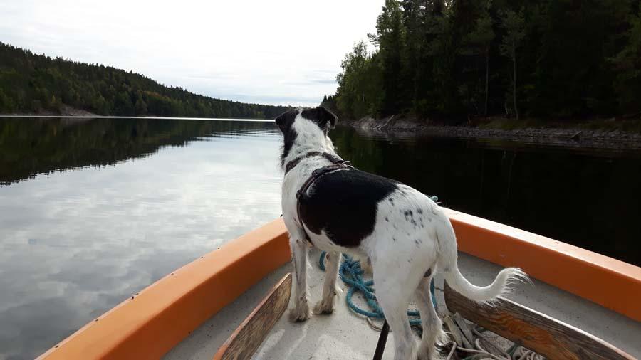 Ich liebe Bootfahren auf unserem See
