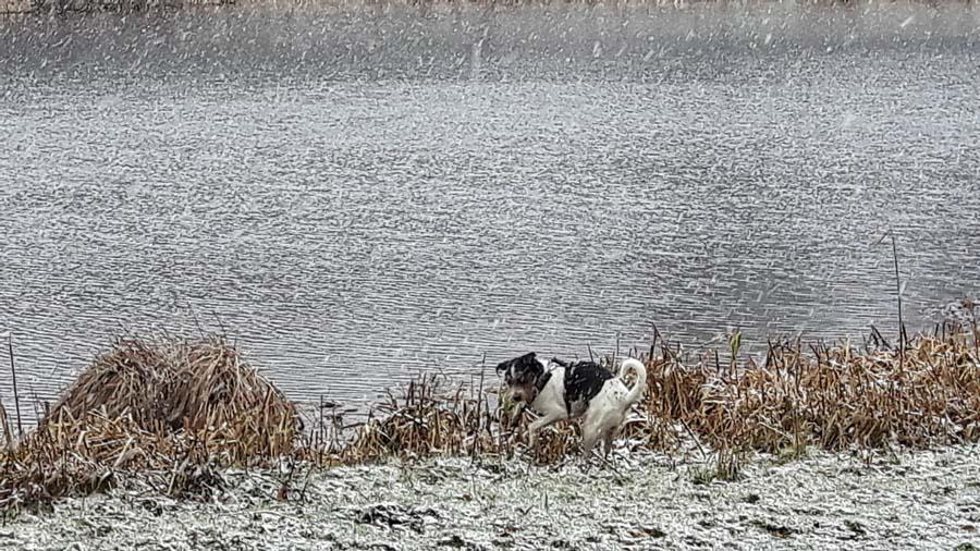 Schnee? Hier und jetzt? Es ist der 19. März in Norddeutschland