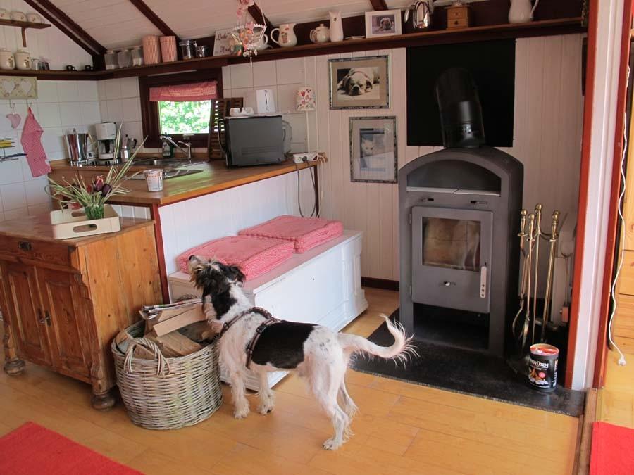 Und Hundeleckerlies stehen auch bereit - gleich entdeckt!