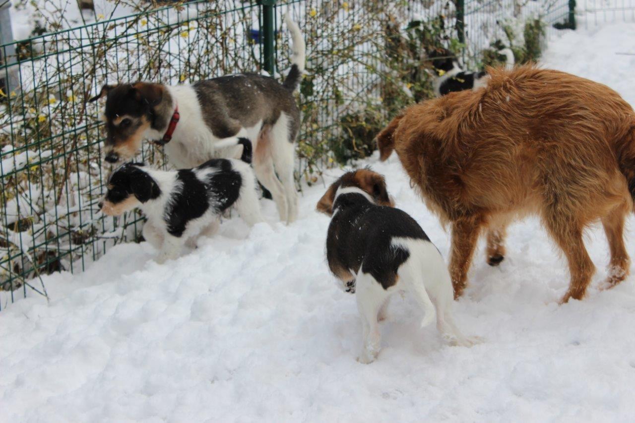 Emmi und Nuria erklären Schnee