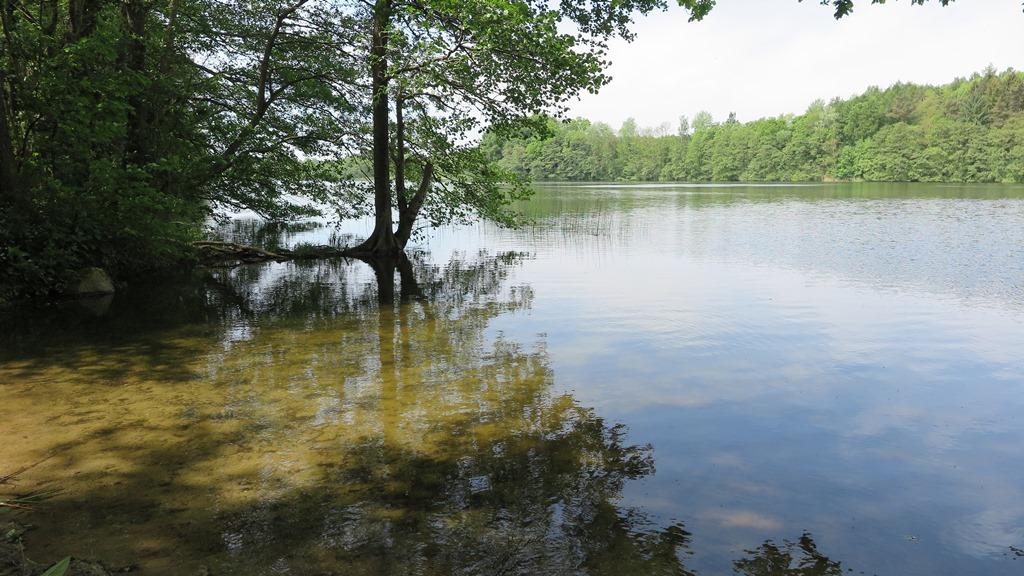 Und immer wieder ein kleiner See