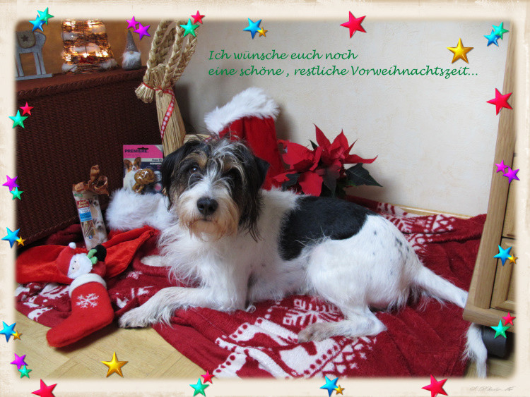 Einen schönen Nikolaustag noch und eine entspannte Adventszeit!