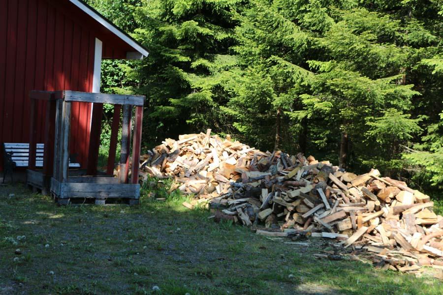 unser Holz vor der Hütt´n - Herrchen hat viel zu tun