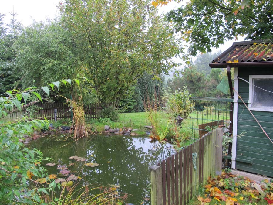 und einen Teich gibt es auch