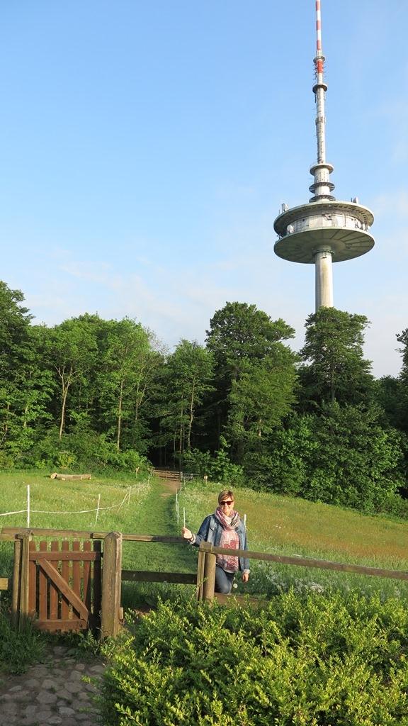 Auf zum höchsten Gipfel Schleswig-Holsteins