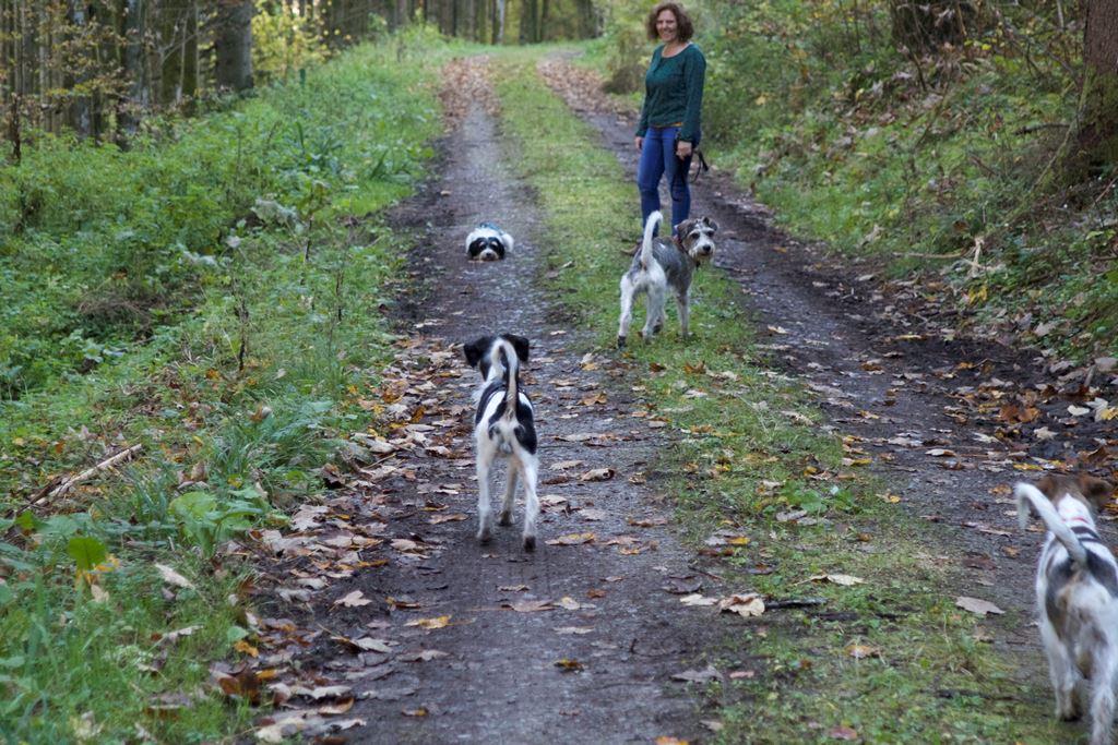 Die Geschwister gehen gemeinsam spazieren...