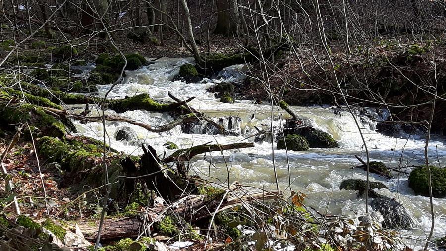 unser Bächlein wird zum reißenden Fluß