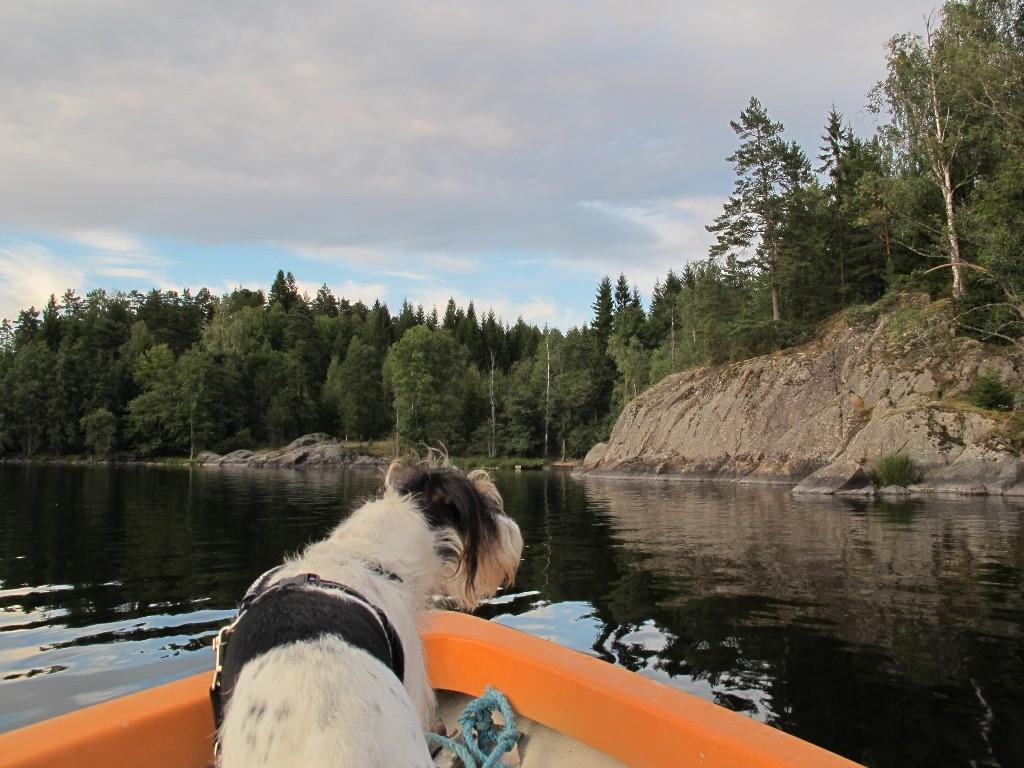 Eine Bootsfahrt ist immer wieder schön,