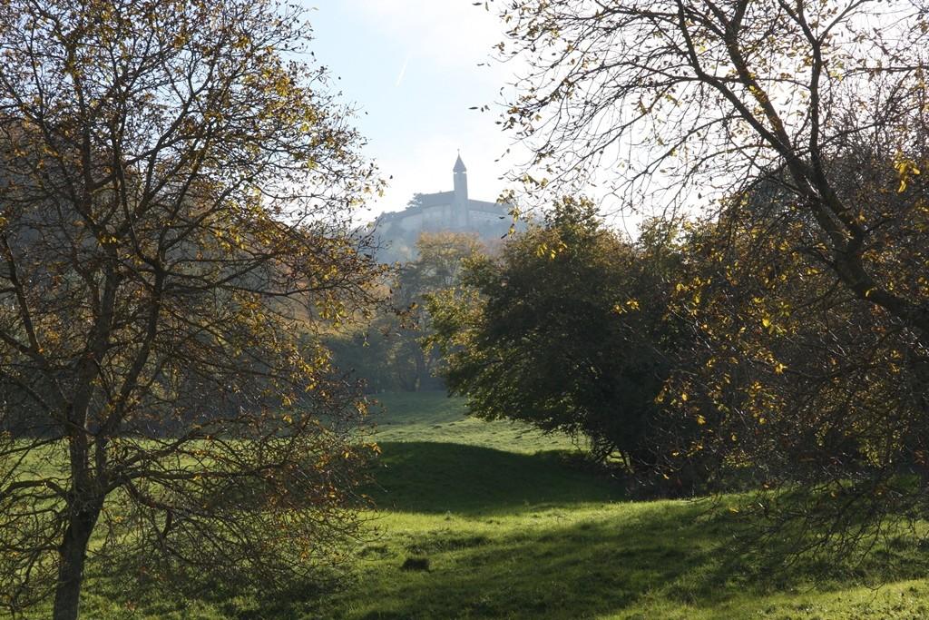 Blick auf die Burg Teck